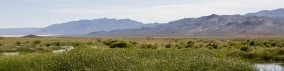 bookmarker-american-outback-12