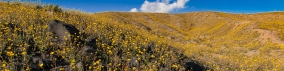 bookmarker-american-outback-4
