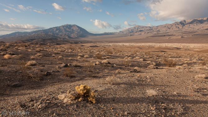 Death Valley 2013-2869