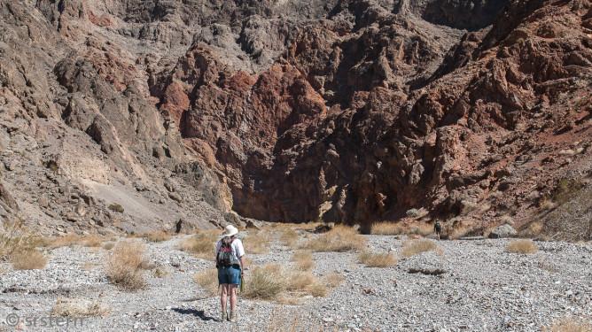 Death Valley 2013-9641