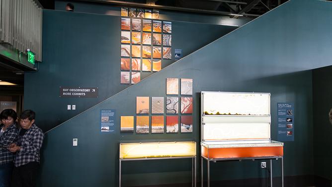 Exploratorium-0644
