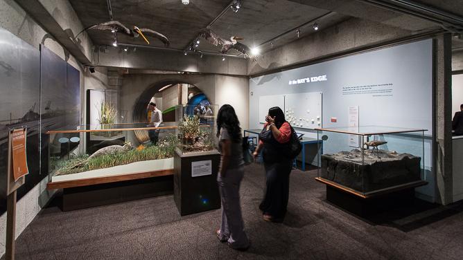 Oak Museum-0397